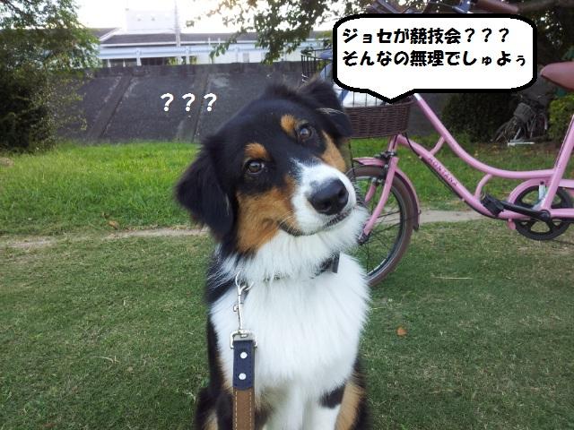 20131001_071937.jpg