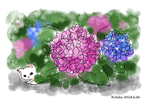 仔猫と紫陽花