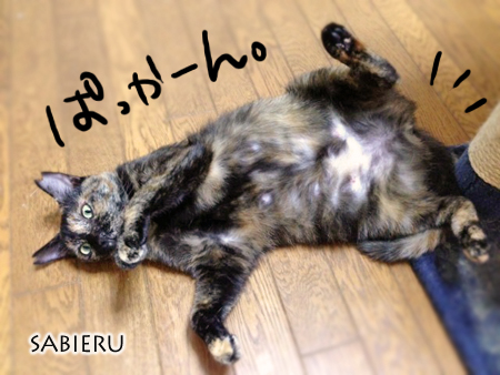 サビエル2013.9.25①