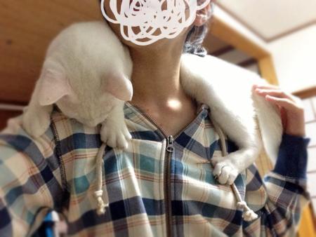 肩乗り猫2013.10.16②