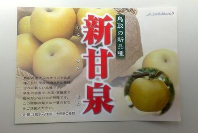 nashi_shinkansen_130920.jpg