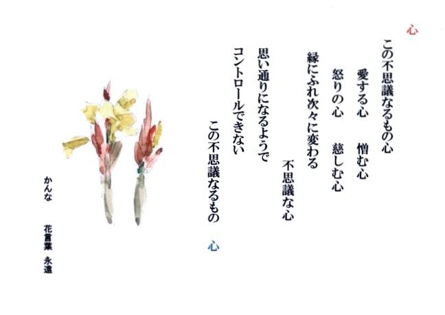 001 (650x460)