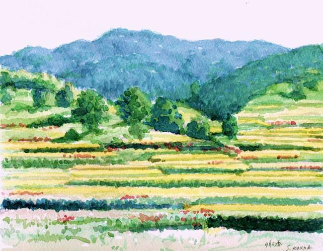 明日香の風景に彼岸花 (650x505)