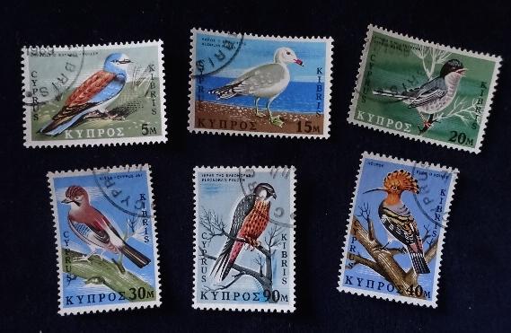 キプロス鳥