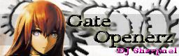 Gate Openerz bn