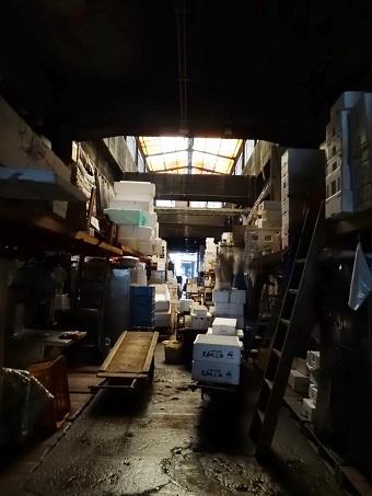 築地市場15