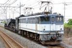 DSC_2301-2013-6-15-配8592