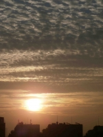 20141122の朝日2