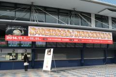 DSC_7293.jpg