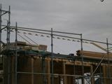 屋根断熱材敷き2