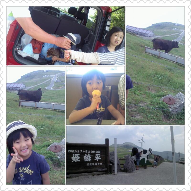 photoshake_1374741931671.jpg