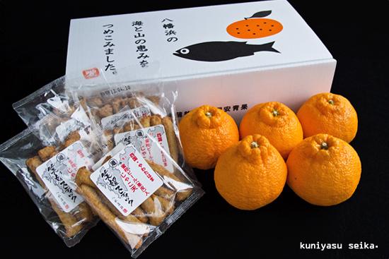 笑媛スティックと柑橘詰め合わせ