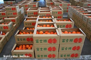 市場に並ぶ富士柿
