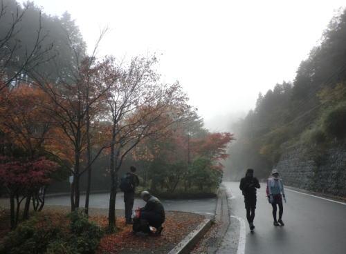 20141102_yabitu_10