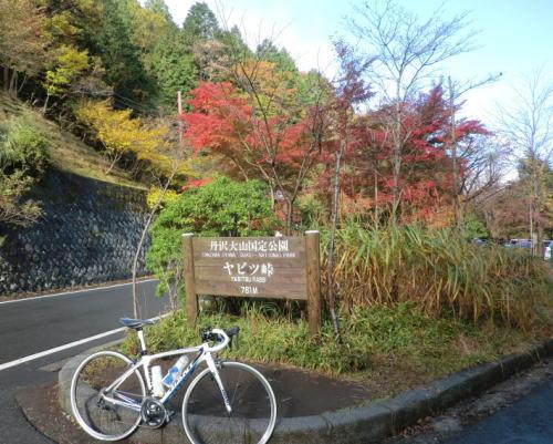 20141102_yabitu_8
