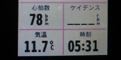 20141122_yabitu_1