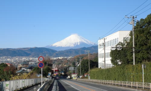 20141214_yabitu_1