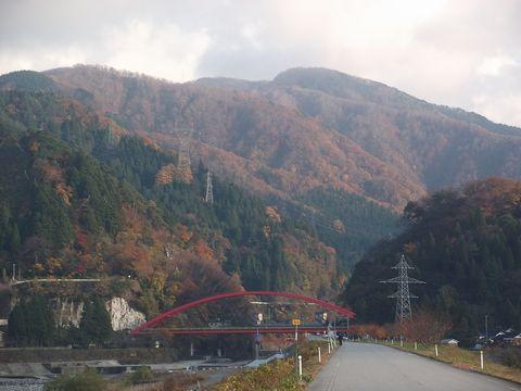 amomiji1123-2.jpg