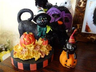 ハロウィン黒猫コーナー