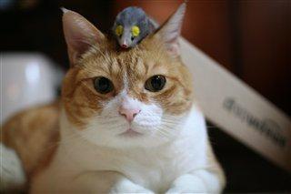 頭にネズミ