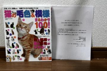 201306_hon.jpg