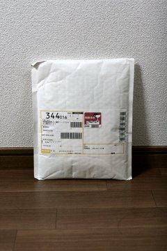 201309_koneko1.jpg