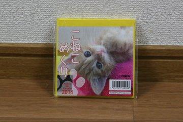 201309_koneko2.jpg