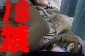suzu358.jpg