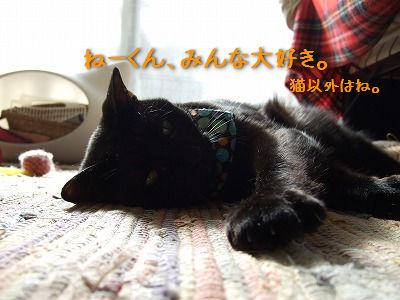 20130330_5.jpg