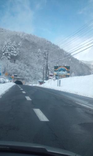雪景色です