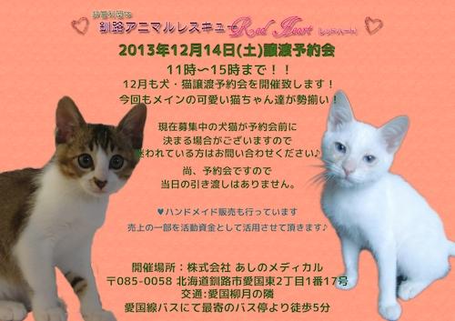 2013年12月14日-譲渡予約会ブログ