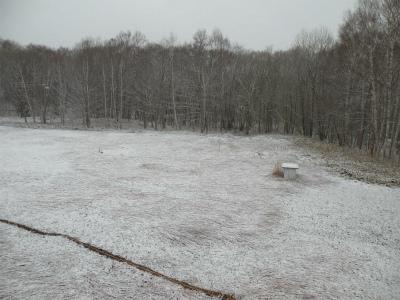 積雪はもう沢山