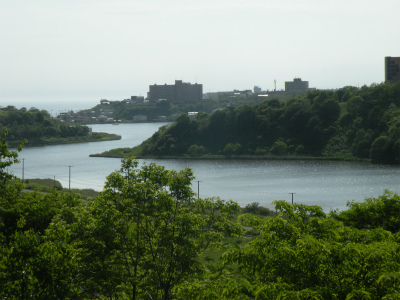 6月24日の釧路春採湖
