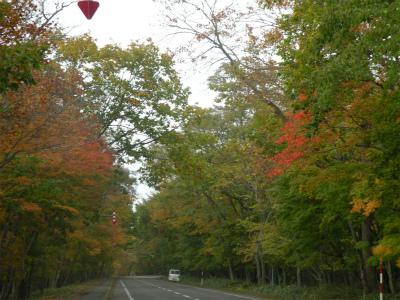 屈斜路湖畔の紅葉