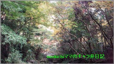 2014112404.jpg