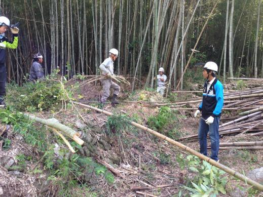 東海2013 竹林の手入れ4