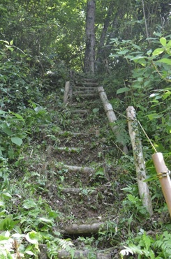 遊歩道の階段補修