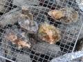 牡蠣炭焼き1