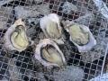 牡蠣炭焼き2