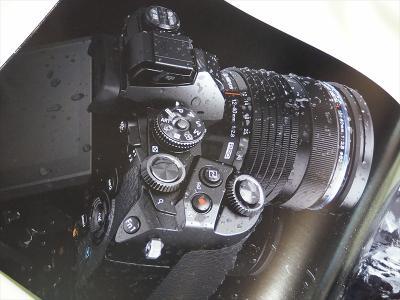 P9162950_R.jpg