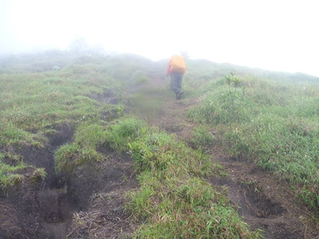 4 2600m付近の急登