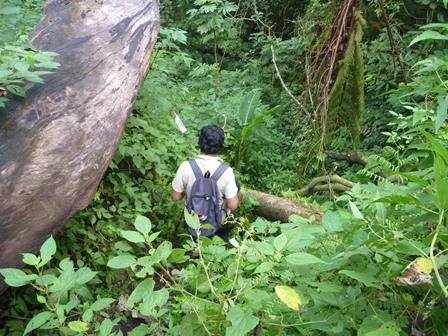 21 最後までわかりにくい登山道でした。