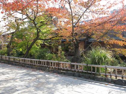 祇園白川を散策3