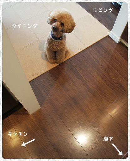 20130715_5.jpg