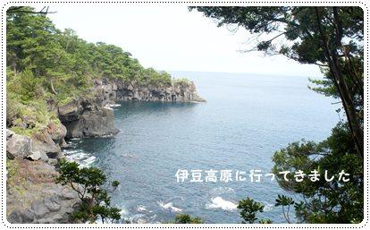 20130805_0.jpg