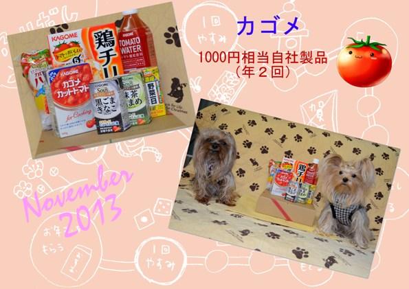 (280)2013年11月到着 カゴメ (2)