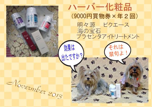 (278)2013年11月到着ハーバー化粧品