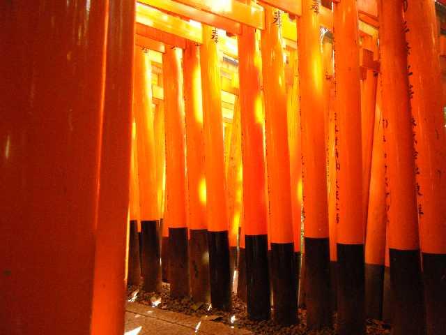 20131101_稲荷神社 千本鳥居