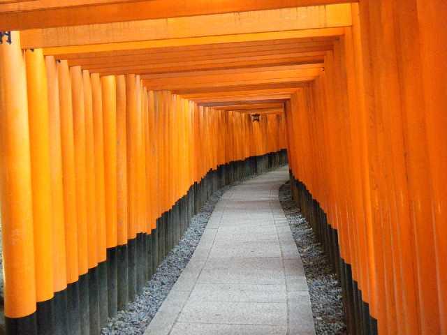 20131101_稲荷神社 千本鳥居2