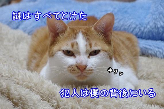 li0575.jpg